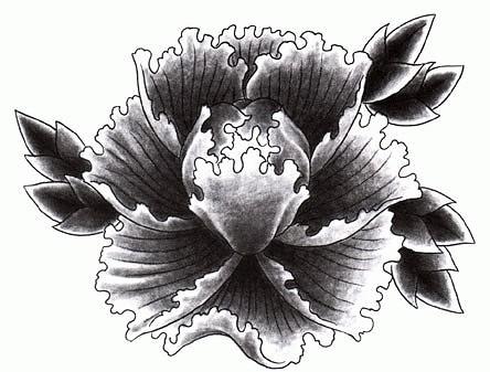 Эскизы цветов хохлома гжель жостово